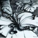 kwiaty agresji